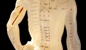 Méridiens shiatsu et acupuncture
